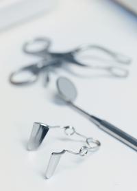 Zahnmedizin in der Tierarztpraxis Obermüller