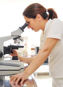 Eine Untersuchung in der Kleintierpraxis Obermüller