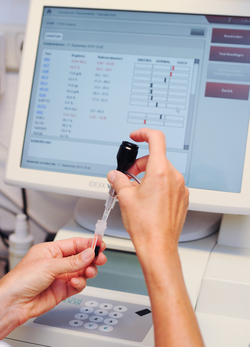 Eine Untersuchung in der Tierarztpraxis Obermüller