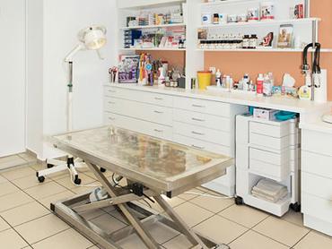 Behandlungszimmer Kleintierpraxis Dr. Obermüller
