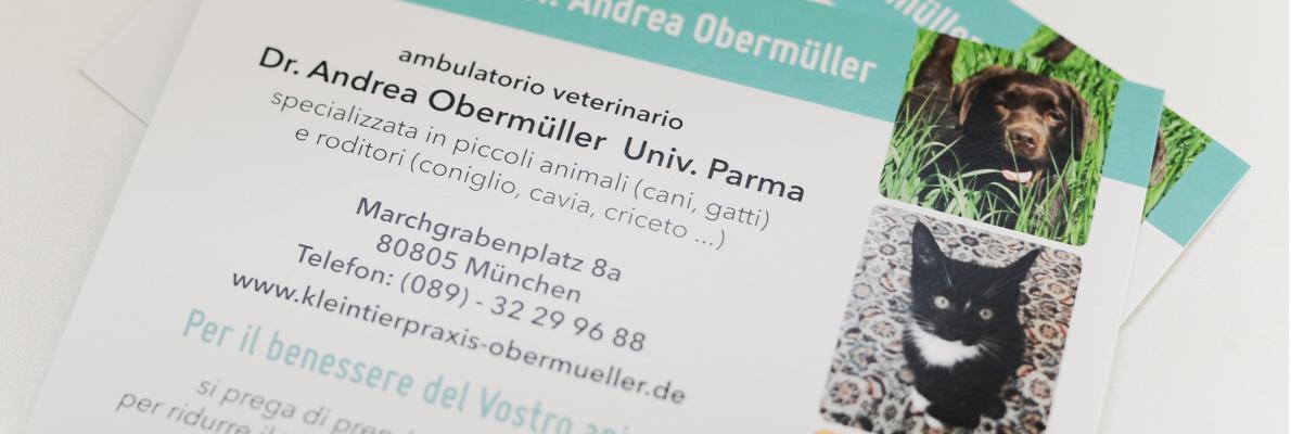 clienti italiani in der Kleintierpraxis Dr. Obermüller